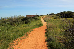 Winding path in meadow Stock Photography