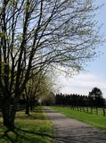 The winding path. Out and about on this beautiful spring day Royalty Free Stock Image