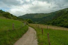 Winding path Stock Photography