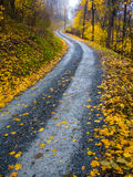 Winding Path Stock Images