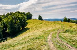 Winding path uphill in to the forest. Lovely summer scenery royalty free stock photography