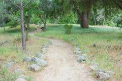 Winding Path through Woods Stock Photos