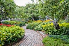 Winding pathway through lush garden royalty free stock image