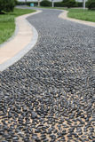 Winding pebble road Royalty Free Stock Photos