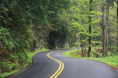 Free Winding Road Royalty Free Stock Photo - 1124125