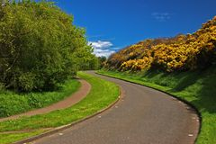 Winding Road. A colourful picture of a winding road with blue sky Royalty Free Stock Photography
