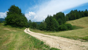 Winding road. In front, a twisty land road, leading into the forest. Fresh cut grass fields to the left and to the right. Summer green trees. Wonderful blue sky Royalty Free Stock Photography