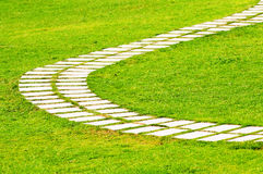 Winding road. The Winding road in green grasses of park royalty free stock images