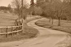 Winding Road Royalty Free Stock Photos