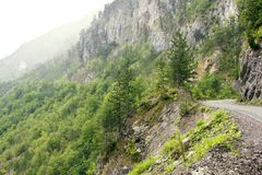 A winding road along a rocky canyon with vegetation stock photos
