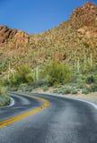 Arizona Saguaro National Park road royalty free stock photography