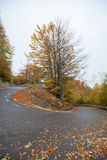 Winding road Royalty Free Stock Photography