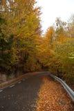 Winding road Royalty Free Stock Photo