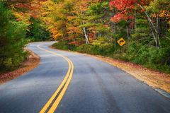 Winding road through autumn trees Stock Photography