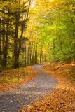Winding Road in Autumn. A winding road in autumn in Upstate NY showing colorful trees and leaves royalty free stock photography