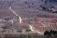 Winding road in bare forest in Baden-Wurttemberg, Germany Stock Photo