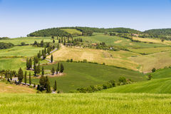 Winding road in Crete Senesi Tuscany Royalty Free Stock Photos