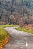 Winding road curves through autumn trees. Royalty Free Stock Photo