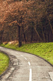 Winding road curves through autumn trees. Royalty Free Stock Image