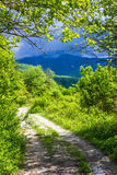Winding road disappearing into the mountains of Abkhazia Royalty Free Stock Photos