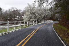 Winding road with a dusting of snow. Take a long winding drive on this fence lined road with a bit of a dusting of snow during spring time royalty free stock photo