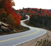 Winding road in fall