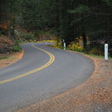 Winding Road in fall. The Old McKenzie Highway winds through the mountains and brightly covered foliage on a fall day in Oregon stock photography