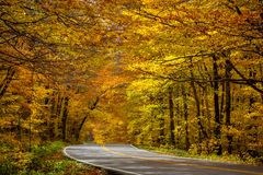 Smuggler`s Notch Vermont Road Winding Through Fall Leaves. Winding road through Fall trees and leaves in Smuggler`s Notch, Vermont Royalty Free Stock Photography