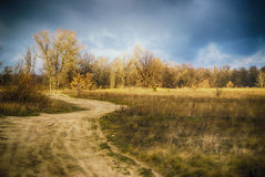 Winding road in the field at the late autumn Stock Photo