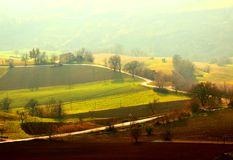 Winding road between fields bathed in sunlight and covered with fog royalty free stock photo