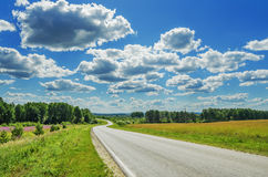 Winding road in the fields Royalty Free Stock Images