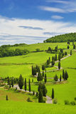 Winding road in the fields of Tuscany Royalty Free Stock Images