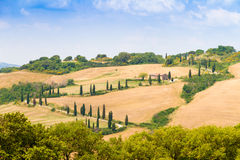 Winding road flanked with cypresses in crete senesi Tuscany, Italy. Winding road flanked with cypresses under a cloudy summer sky in crete senesi near Siena in stock photography