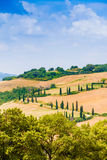 Winding road flanked with cypresses in crete senesi Tuscany, Ita Stock Photos