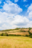 Winding road flanked with cypresses in crete senesi Tuscany, Ita. Winding road flanked with cypresses under a cloudy summer sky in crete senesi near Siena in royalty free stock photos