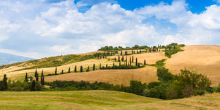 Winding road flanked with cypresses in crete senesi Tuscany, Ita. Winding road flanked with cypresses under a cloudy summer sky in crete senesi near Siena in stock images