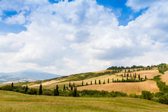 Winding road flanked with cypresses in crete senesi Tuscany, Ita. Winding road flanked with cypresses under a cloudy summer sky in crete senesi near Siena in stock photo