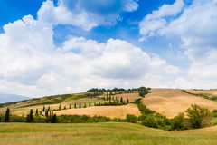 Winding road flanked with cypresses in crete senesi Tuscany, Ita. Winding road flanked with cypresses under a cloudy summer sky in crete senesi near Siena in royalty free stock photography