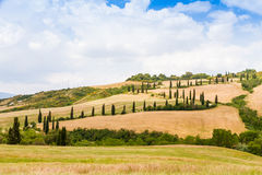 Winding road flanked with cypresses in crete senesi Tuscany, Ita. Winding road flanked with cypresses under a cloudy summer sky in crete senesi near Siena in stock photography