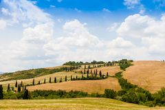 Winding road flanked with cypresses in crete senesi Tuscany, Italy. Winding road flanked with cypresses under a cloudy summer sky in crete senesi near Siena in royalty free stock photos