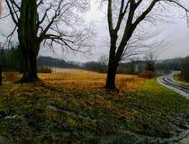 Foggy farm fields royalty free stock photography