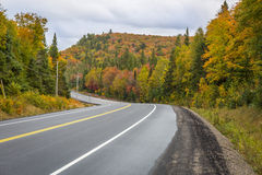Winding Road Through a Forest of Fall Color - Ontario, Canada. Winding Road Through a Forest of Fall Color - Algonquin Provincial Park, Ontario, Canada royalty free stock photos