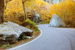 Winding road through forest in Stowe, Vermont Royalty Free Stock Images