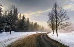 Winding road through forest in winter. Beautiful nature scenery with naked trees on foggy and cloudy sunrise. lovely transportation background Royalty Free Stock Photos