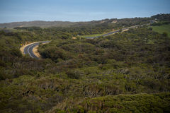 Winding road of the Great Ocean Road, Australia. Winding road through green forest landscape of the Great Ocean Road, famous route for road trip in Victoria Stock Photo
