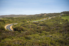 Winding road of the Great Ocean Road, Australia. Winding road through green forest landscape of the Great Ocean Road, famous route for road trip in Victoria Royalty Free Stock Images