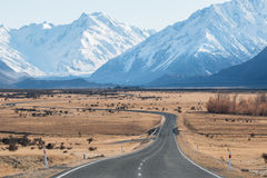 Winding road in high country, Mt. Cook national park Stock Photos