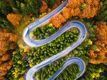 Winding road from high mountain pass, in autumn season, with orange forest stock images