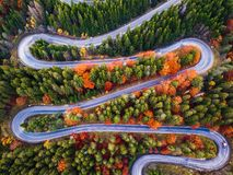 Winding road from high mountain pass, in autumn season, with orange forest stock photo