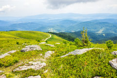 Winding road on a hillside near the forest Royalty Free Stock Photos